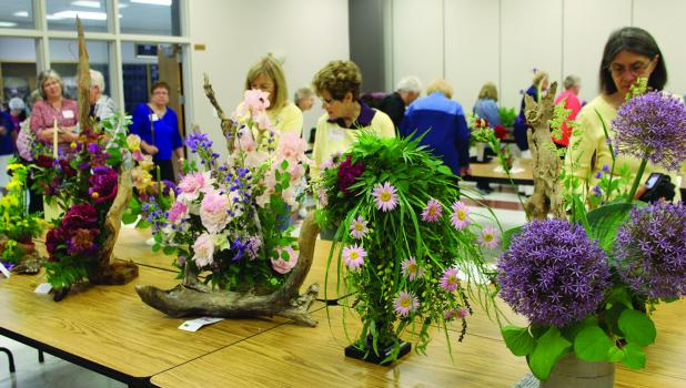The 64th Annual Convention of the Minnesota State Horticultural Society  — District 4 was hosted by the Springfield Garden and Hobby Club in the Springfield Area Community Center Tuesday, June 11.